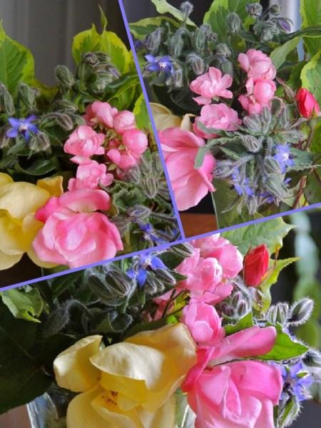 nov roses vase