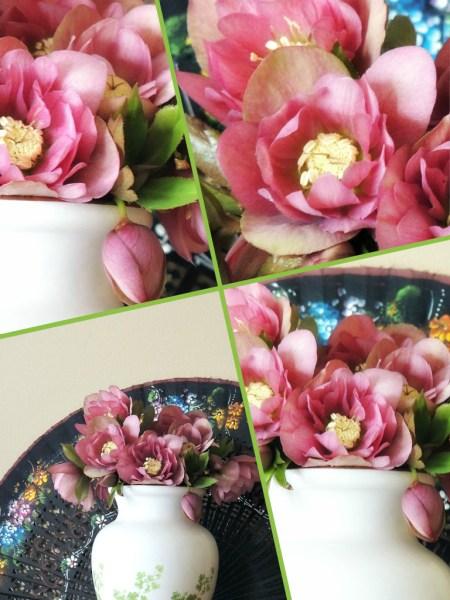 hellebore vase collage