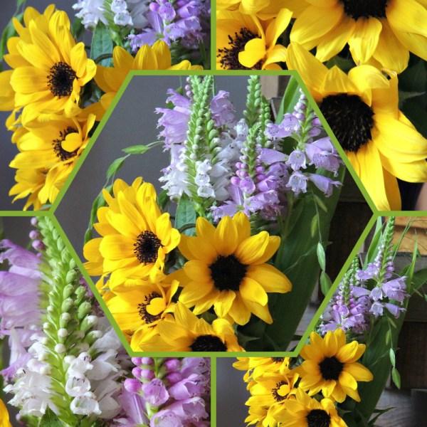 sunflower vase collage