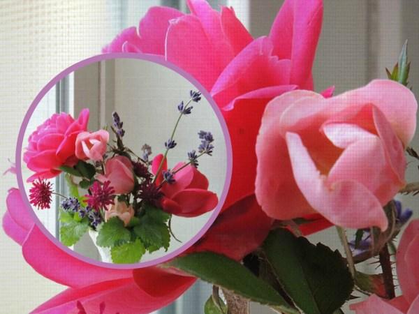 rose vase nov collage