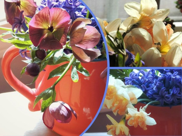 orange pitcher vase