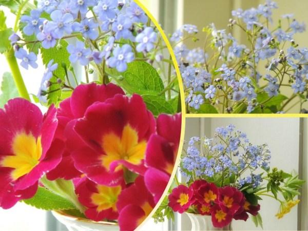 primrose vase collage