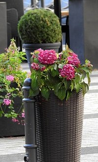 Patio Planters To Beautify Your Patio
