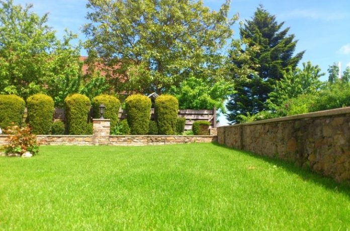 Complete Guide to your Own landscaping Backyard Home
