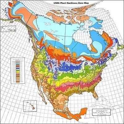 USDA_Hardiness_zone_map