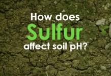 How Does Garden Sulfur affect soil PH?