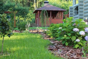 what you Should Know about Landscape and Landscaping