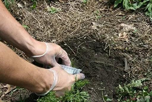 lead test soil kit