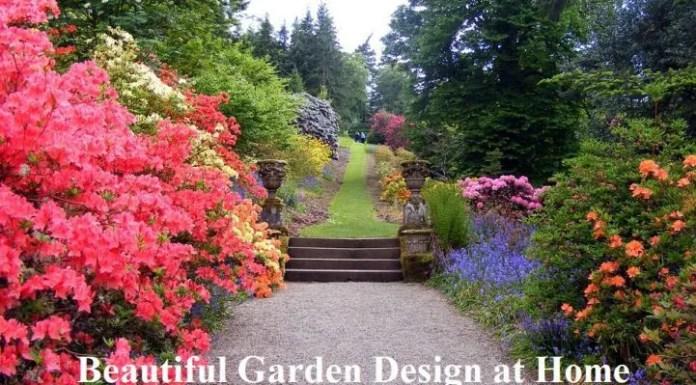 Beautiful Garden Design at Home