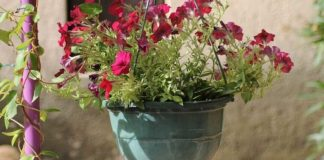 Crafts for Hanging Flower Pots