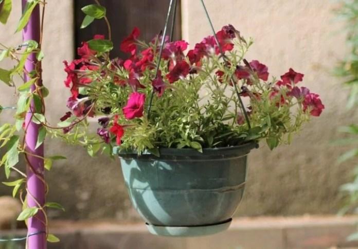 Crafts for Hanging Flower Pots