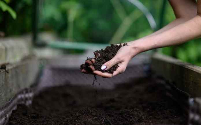 The Truth About Organic Fertilizers