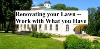 Renovating your Lawn -- Work with What you Have