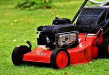 Complete Guide - Organic Lawn Care