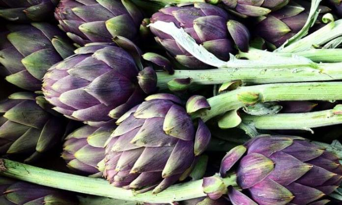 How to Grow Artichokes in Your Garden