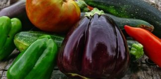 Peppers and Eggplants Like Nourishing Fertilizer