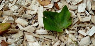 Organic Mulch vs Inorganic Mulch