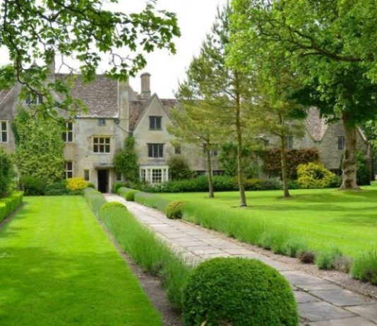 How to Have a Great Lawn