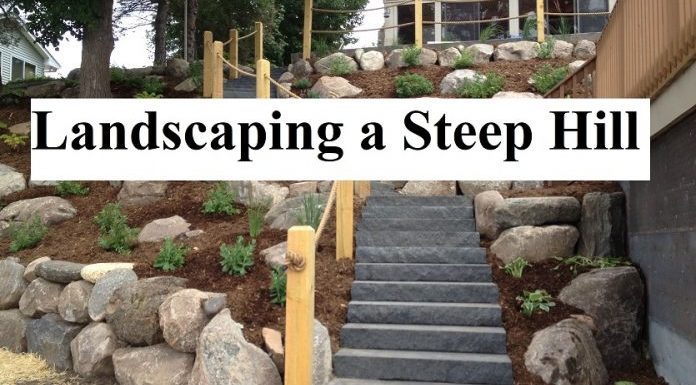 landscaping a steep hill
