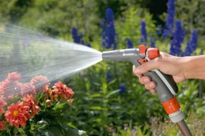 5 Easy Water-Wise Tips for your Garden