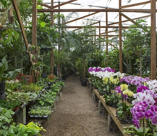 An Overview of How Nurseries Operate