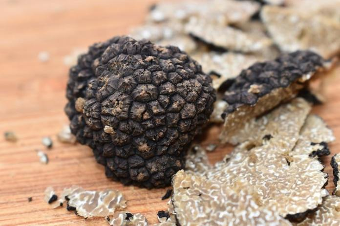 Complete Guide About Truffle
