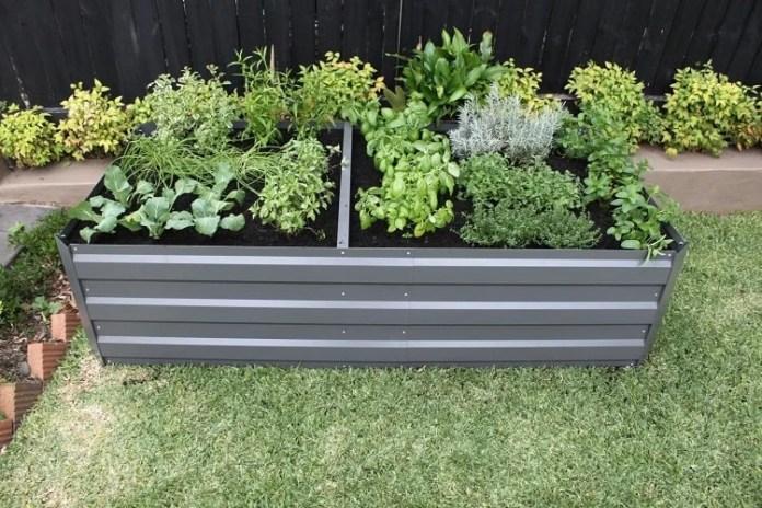 Corrugated Iron Raised Garden Beds