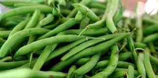 How to Use your Abundant Green Bean Harvest