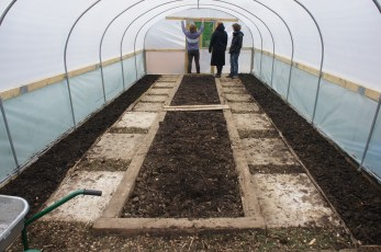 The polytunnel ready for planting in