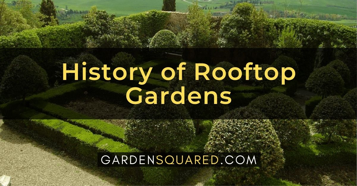 History Of Rooftop Gardens