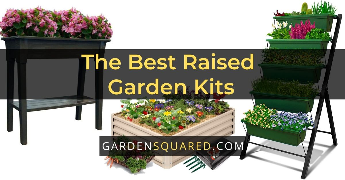 Best Selling Raised Garden Kit