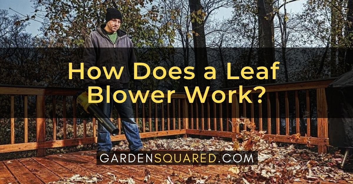 How Does A Leaf Blower Work