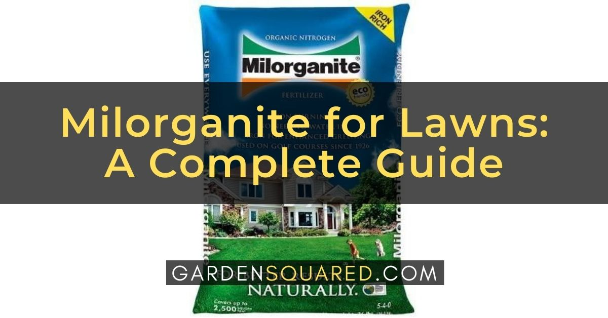 Milorganite For Lawns A Complete Guide