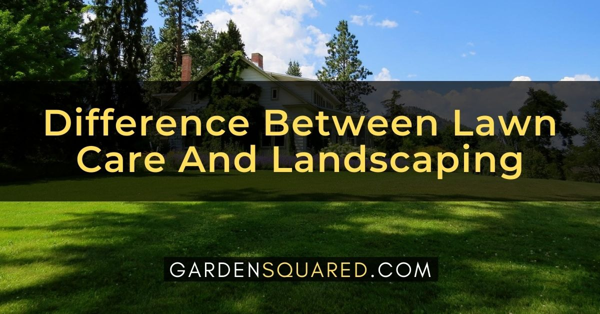 What Is The Difference Between Lawn Care And Landscaping