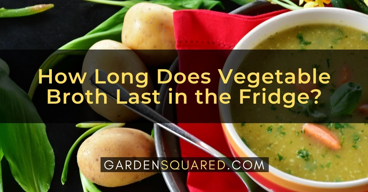 How Long Does Vegetable Broth Last In The Fridge