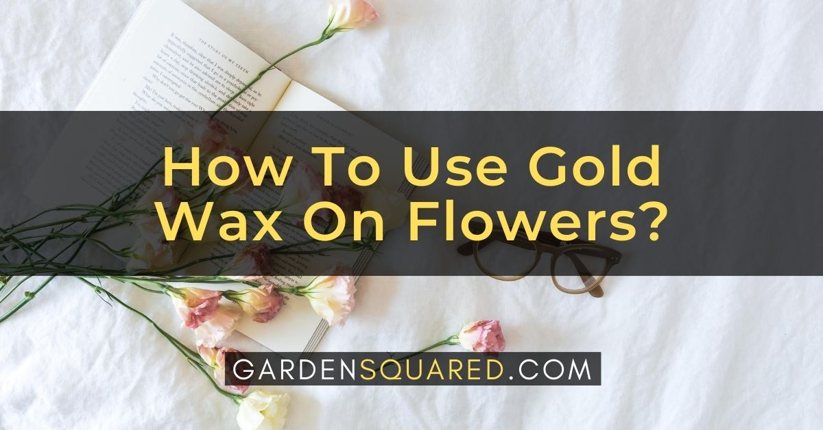 How To Use Gold Wax On Flowers A Guide To Preserving Flowers With Wax