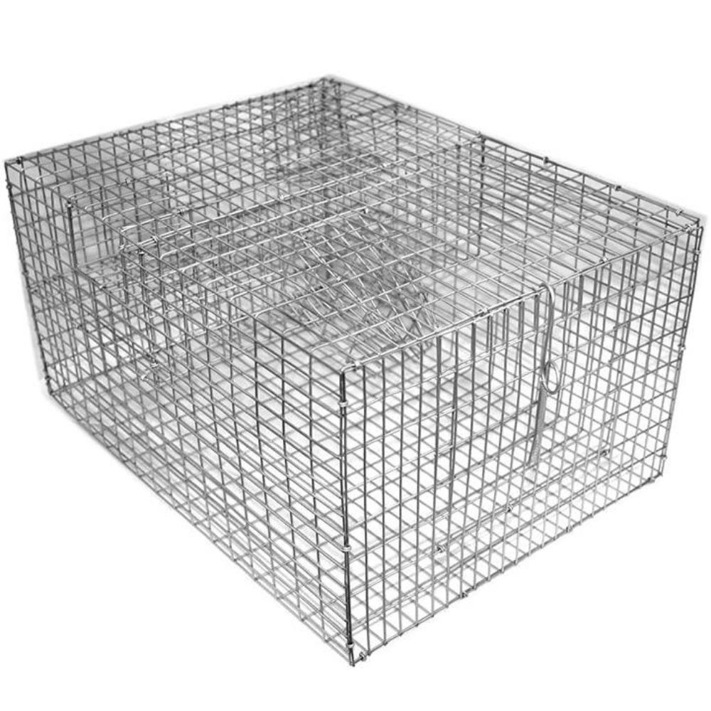 Bird B Gone BMP-SP2C Sparrow Trap with Two Chambers