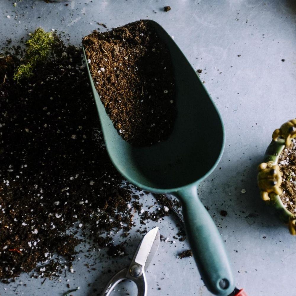 Soil Exhibits a Finer Texture