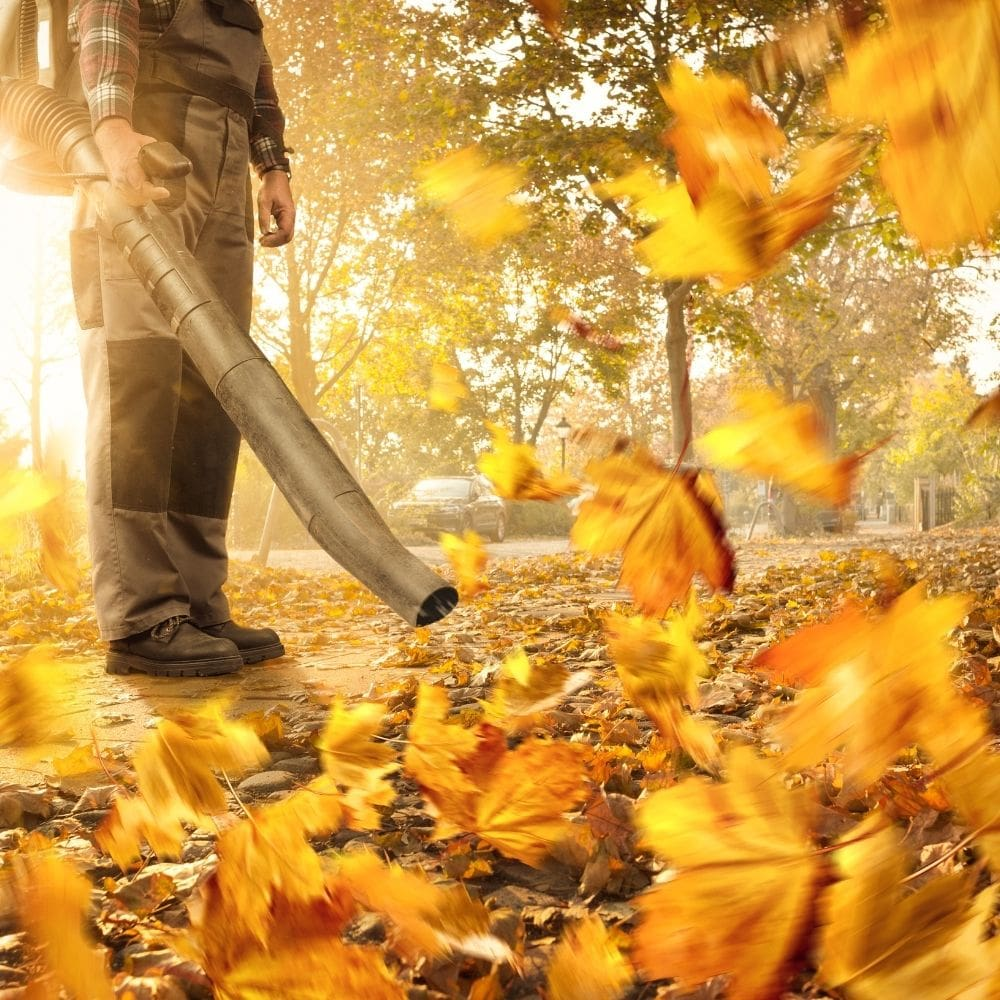 Remove Leaves And Debris Using A Leaf Blower