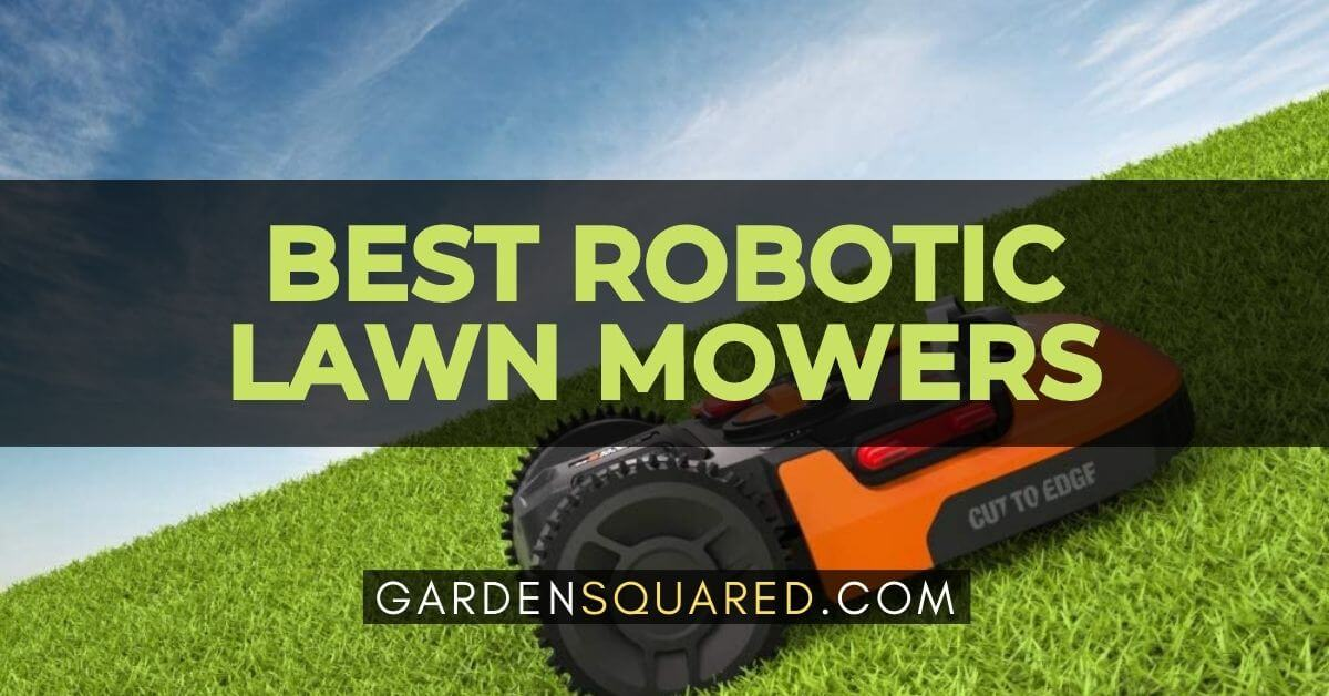 Best Robotic Lawn Mowers Gps Lawn Mowers