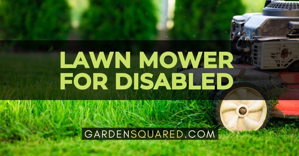 Best Lawn Mower For Disabled