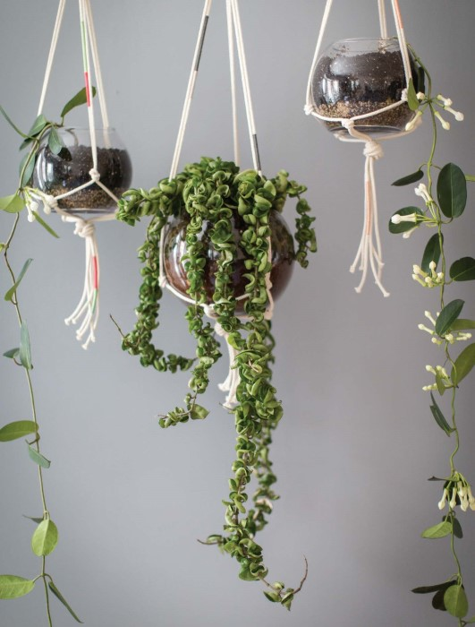 Outdoor Hanging Plant Containers