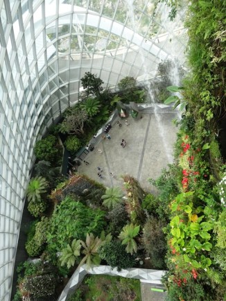 Looking down from the Cloud Forest at Gardens by the Bay. Photo Louise McDaid