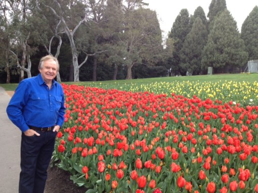 Back loving the tulips at Floriade again, colour overload
