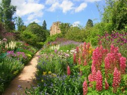 June Border at Crathes Castle Gardens- Photo Richard Slessor -geograph.org.uk