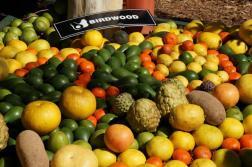 Queensland Garden Expo edible gardening
