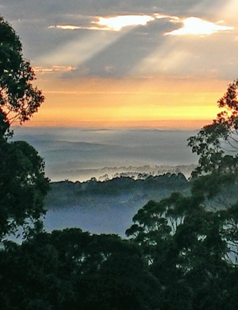 Spectacular sunrise from the Jungle Lodge Mt Tomah