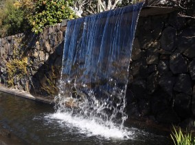 Waterfall in Blue Mountains Botanic Garden at Mount Tomah