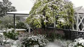 Chapel-House-garden-with-snow