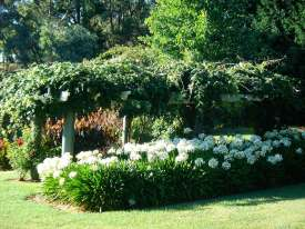 Chapel-House-gardens-in-summer